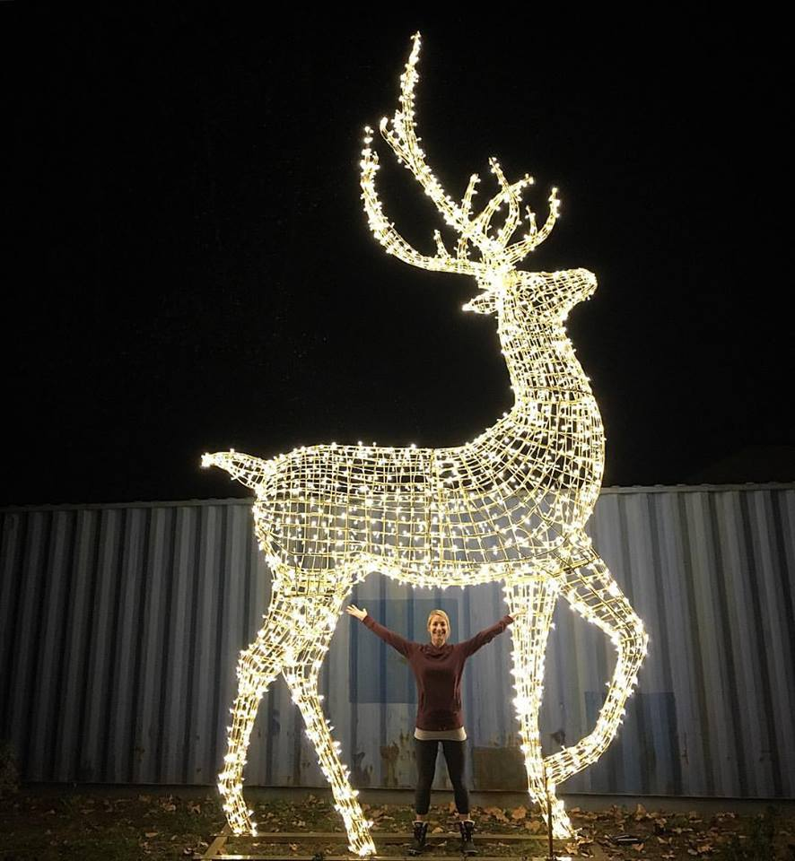 World's largest Christmas light maze coming to B.C.