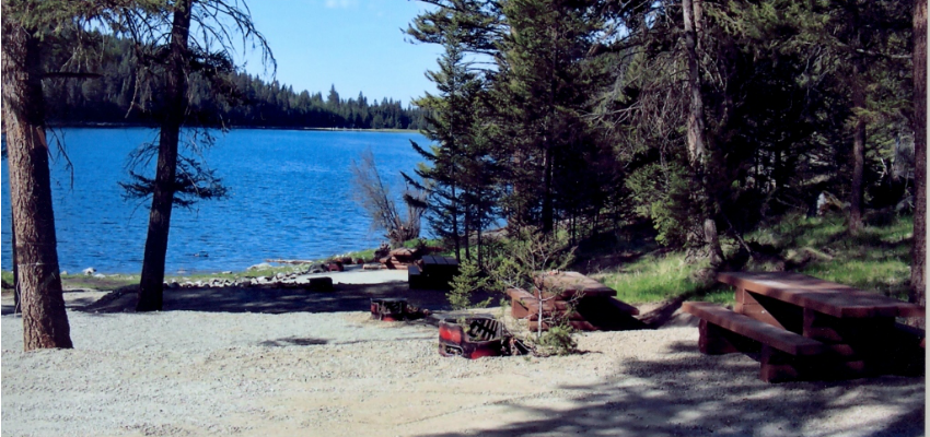 6 lakes where you can camp for free for Free fishing spots near me