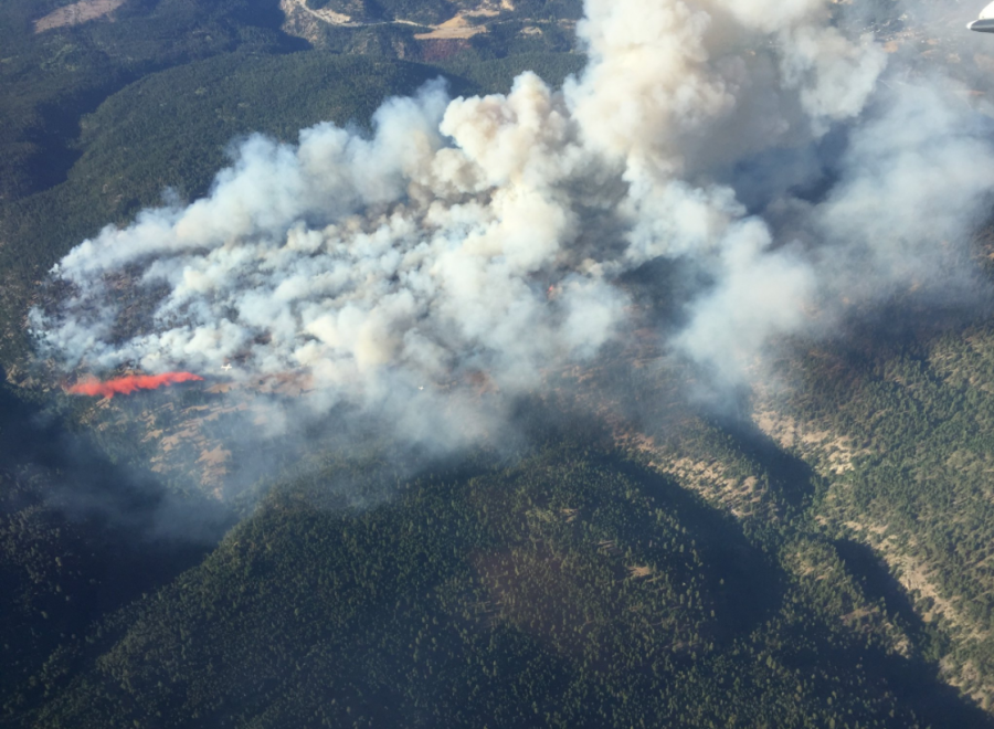 Aggressive wildfire near Peachland, BC, grows to 100 hectares