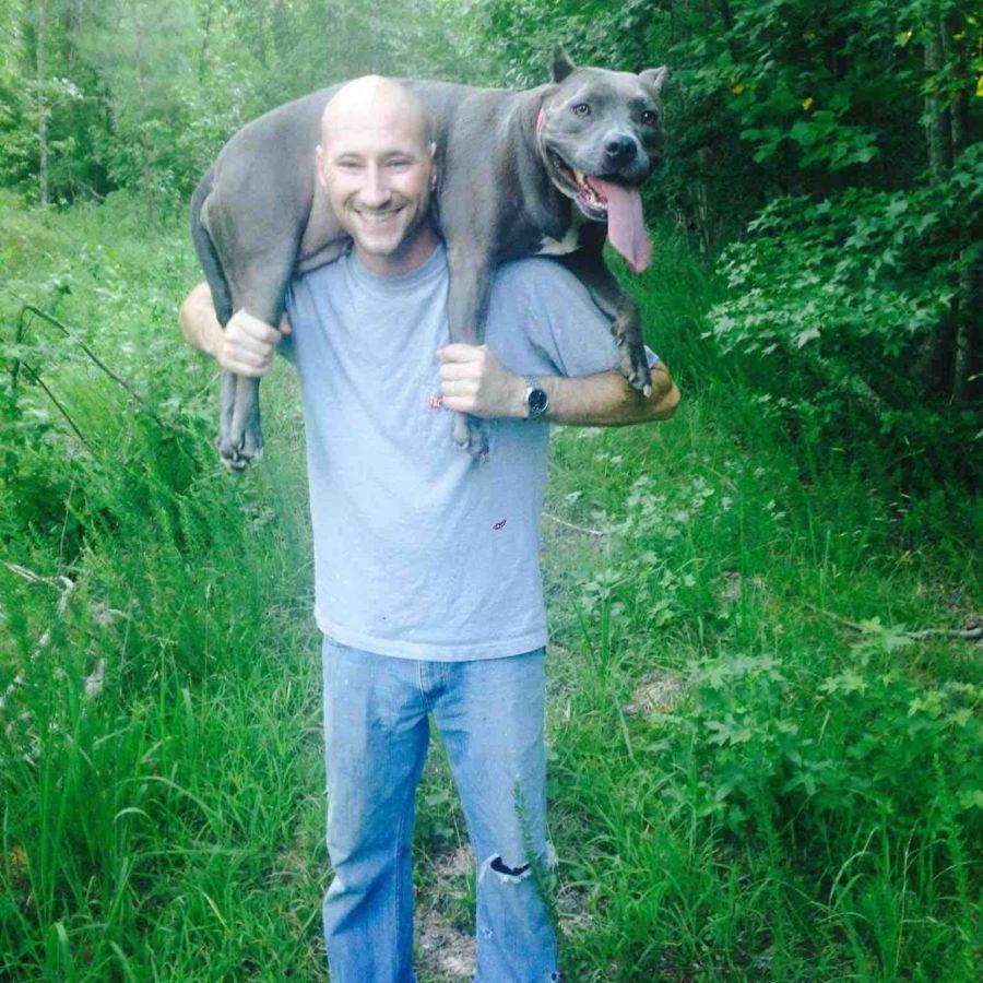 GoFundMe for homeless veteran who helped woman brings in $320000