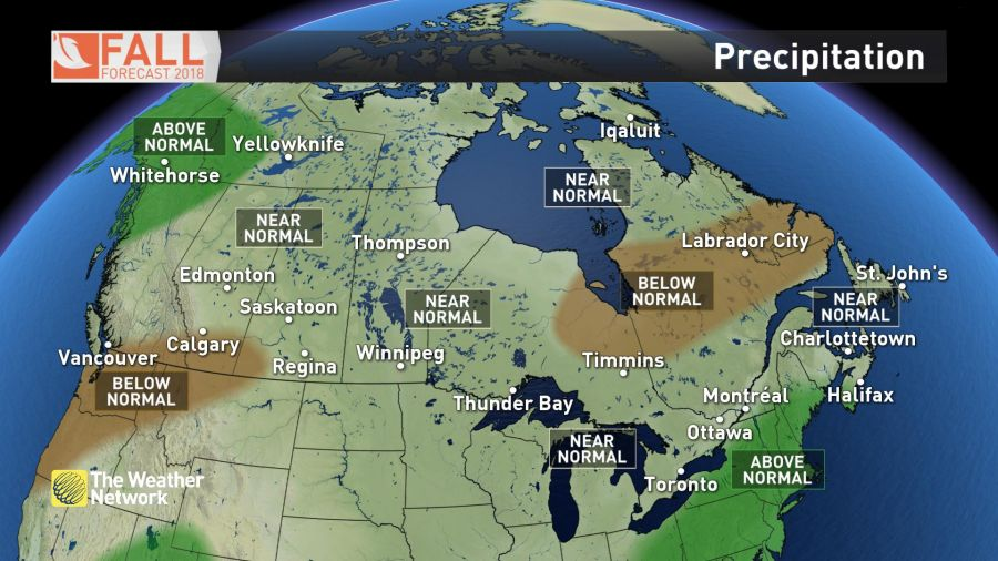<who>Photo Credit: The Weather Network