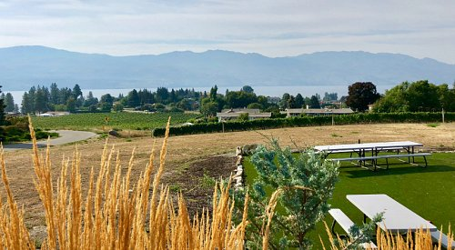 Get Local with KelownaNow: Featuring Mt. Boucherie Estate Winery