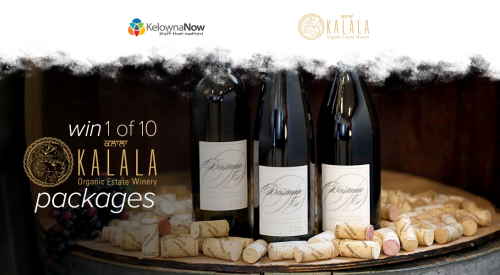 Contest Closed! Contest Alert! Win 10 wine-inspired prizes in celebration of Kalala's 10th Anniversary