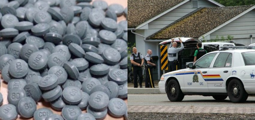 $300k in heroin and pure fentanyl found in B.C. drug bust